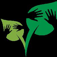 original-logos-2015-Oct-1891-8438618